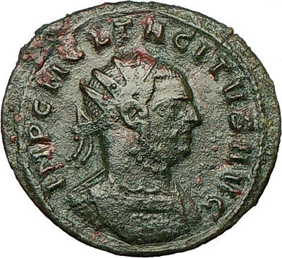 TACITUS 275AD   Ancient Roman Coin Providentia Goddess of forethought  i18207