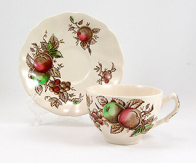 Johnson Brothers HARVEST TIME Flat Cup and Saucer Set 2.375 in. Brown Multicolor