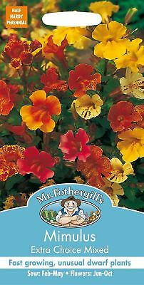 Mr Fothergills - Flower - Mimulus Extra Choice Mixed - 2500 Seeds