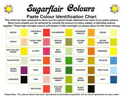 SUGARFLAIR CONCENTRATED SPECTRAL FOOD COLOURING PASTE GEL 50+COLOURS 25g