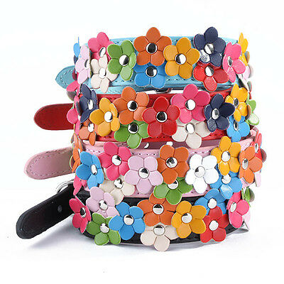 Cute Flower Studded Leather Buckle Dog Cat Pet Puppy Collar Adjustable 4 Colors