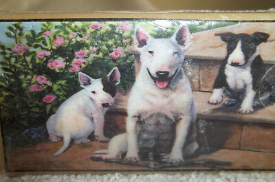 English Bull Terrier  On A Soap New! Made In Usa  Free Shipping