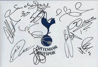 Tottenham Hotspurs Squad SIGNED Autograph 12x8 COA Photo AFTAL SPURS Authentic