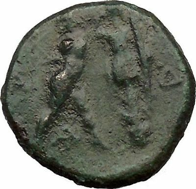 Antigonos II Gonatas Macedonian King Ancient Greek coin Athena PANIC God  i36824