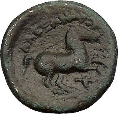 Alexander III  The Great  336BC Ancient Greek Coin  APOLLO Cult  HORSE  i37060
