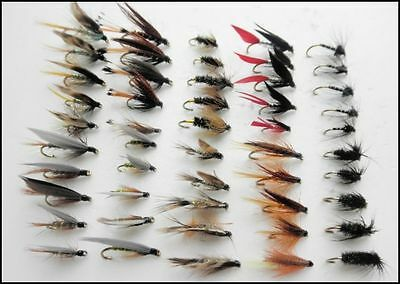 50 Wet Fishing Flies,10 Varieties, Mixed Hook Size, For Fly Fishing