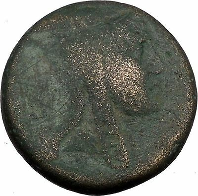 AMISOS in PONTUS Mithradates VI the Great Mithras Ancient Roman Coin Rare i38098