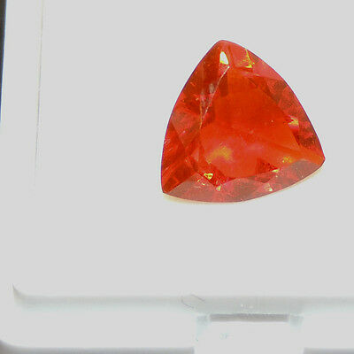 Faceted 9mm Mexican Fire Opal Trillion Cut Gemstone (6069)