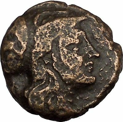 Antigonos II Gonatas Macedonian King Ancient Greek coin Athena PAN Cult  i38639