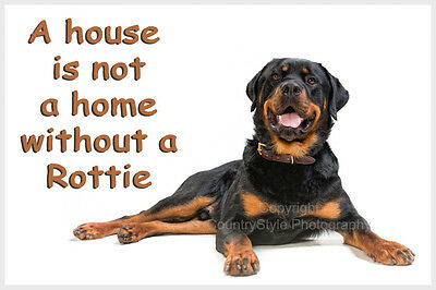 Rottweiler Pet Dog Fridge Magnet New Rottie Birthday Gift