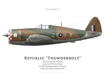 Print P-47 Thunderbolt, No 258 Squadron RAF, India, 1944 (by G. Marie)
