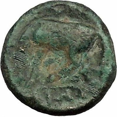 Larissa in Thessaly 360BC RARE Authentic Ancient Greek Coin Nymph Horse  i39022