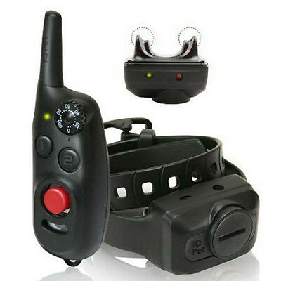 Dogtra IQ-CLIQ Remote Dpg Training Shock Collar IQ Cliq