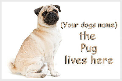 Personalised Pug Pet Dog Fridge Magnet New Gift with your dogs name