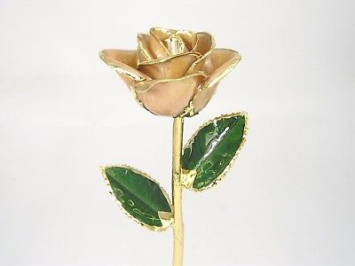 24k Gold Dipped Ivory White Real Rose (Free Anniversary Gift Box)