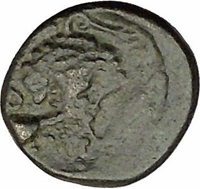 Opus in LOKRIS OPUNTIA & EPIKNEMIDIA 338BC RARE Greek Coin Athena Grapes  i39217