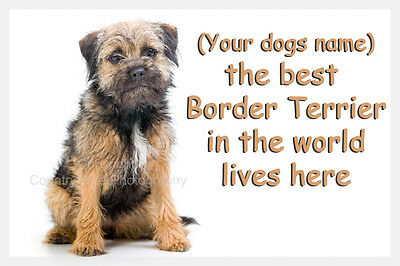 Border Terrier Dog Personalised Fridge Magnet New Gift with your dogs name