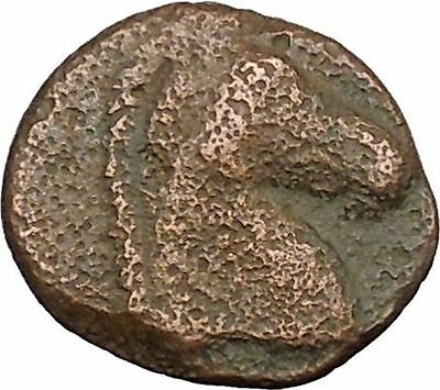 Carthage in Zeugitana 400BC Tanit Cult & Horse  Rare Ancient Greek Coin  i39357