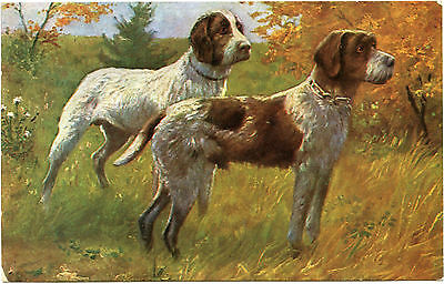 Chiens De Chasse. Hunting Dogs