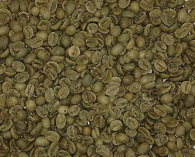 Indian Tiger Mountain RAW GREEN Coffee Beans - 2 KG