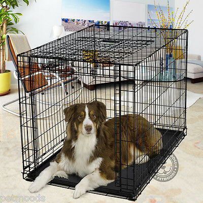 MidWest OVATION Metal Dog Crate Up-and-Away SINGLE Door 1942 71-90 lb Dog L 44""