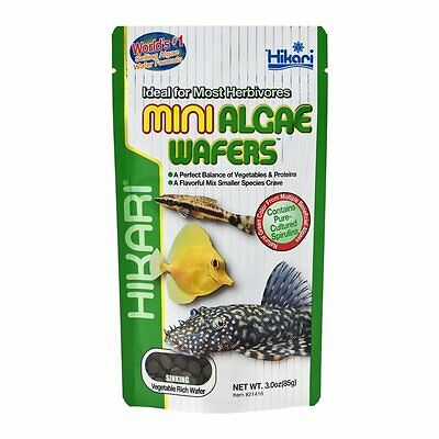 Hikari Mini Algae wafers Plec Catfish Tropical Marine Fish Food Various Sizes