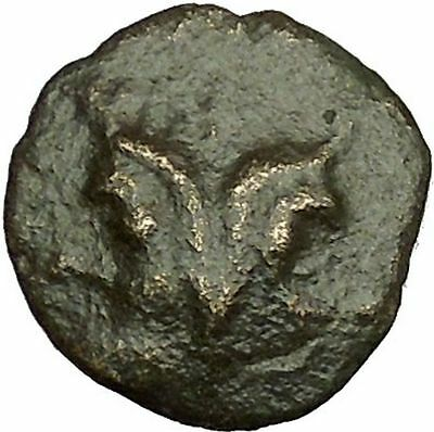 Thessalonica in Macedonia 88BC RARE Ancient Greek Coin Centaurs Janus i40099