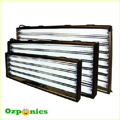 Hydroponics Hydro 22 T5 Propagation Grow Light + 2X24W Fluorescent Tube