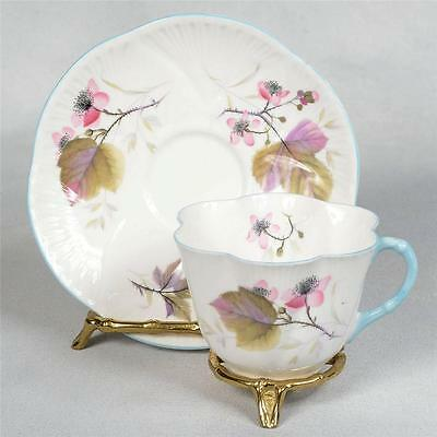 Shelley Teacup & Saucer - White/blue Trim Decorated With Pink Flowers