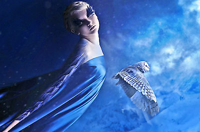 Picture Poster Art Gothic Woman in a Forest with Flying Crows Framed Print