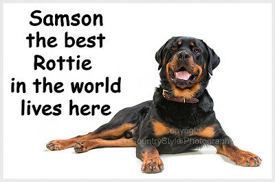 Rottweiler Fridge Magnet personalised dogs name Gift