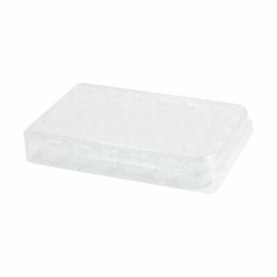 Rectangle Shape Clear Polystyrene Sterile 24 Well Cell Culture Plate