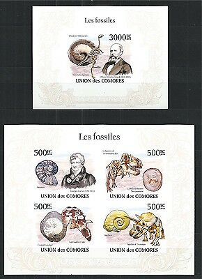Comores Komoren 2010 Mini Sheet Block Set Fossils Marsh Cuvier Imperf **