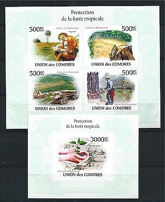 Comores Komoren 2010 Mini Sheet Block Set Save The Tropical Forest Apes Imperf