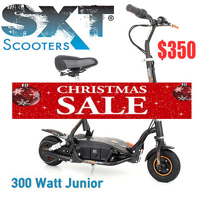 SXT300 SXT-SCOOTERS 24V 300W Electric Scooter German Brand Top Quality Xmas Gift