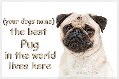 Pug Pet Dog Fridge Magnet New Gift Personalised with your dogs name