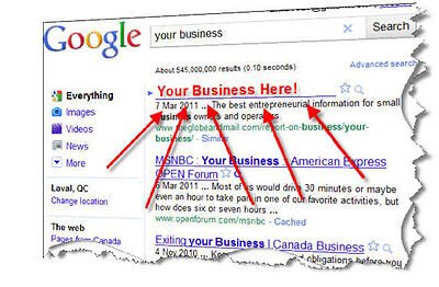 SEO: Rank Your Website On 1st Page of Google! MozRank PR 4 & Up