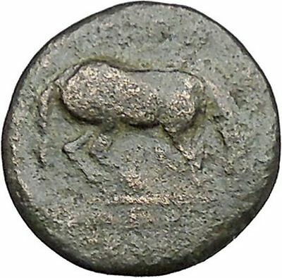 Larissa in Thessaly 360BC RARE Authentic Ancient Greek Coin Nymph Horse  i41109