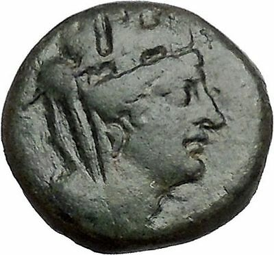 TARSUS in CILICIA 2-1stCenBC Tyche Sandan Lion Pyre Ancient Greek Coin i41483