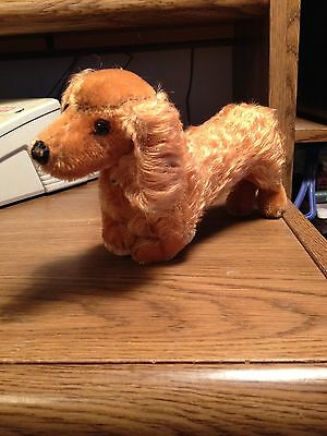 Steiff dachshund, Wiener dog, extra long, mohair w. button, made in USA Zone,GER