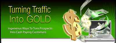 Turning Traffic Into Gold- 12 MP3 Audios on 1 CD ROM