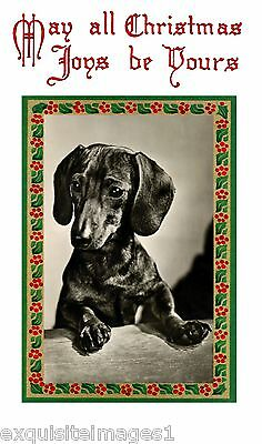 Vintage Christmas Art~Dachshund Puppy Dog Profile~NEW Christmas Note Cards