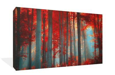 Large Red Forest Landscape Canvas Print Wall Art Picture Painting