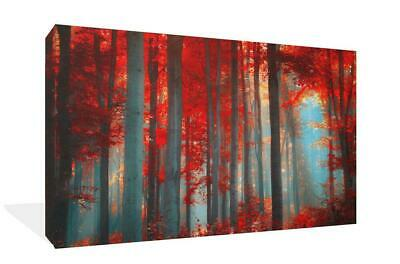 New Large Red Forest Landscape Canvas Print Wall Art Premium Quality Framed Hang