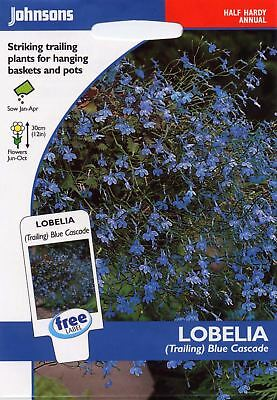 Johnsons Pictorial Pack - Flower - Lobelia (Trailing) Blue Cascade - 1500 Seeds