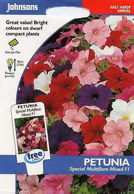 Johnsons - Flower - Petunia Special Multiflora Mixed F1 - 120 Seeds