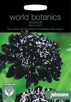 Johnsons World Botanics Flower - Scabious Black Knight - 50 Seeds