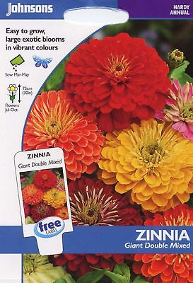 Johnsons Pictorial Pack - Flower - Zinnia Giant Double Mixed F1 - 100 Seeds