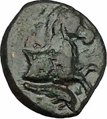 Panormos in Sicily 336BC Ancient Greek Coin APOLLO Cult Horse i41730