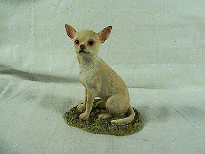 1a Sherrat And Simpson Chihuahua Dog, Glass Eyes